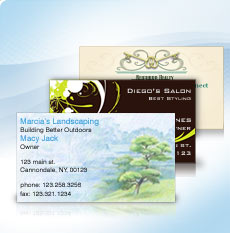 Vistaprint offers 250 free business cards aol finance free business cards from vistaprint colourmoves