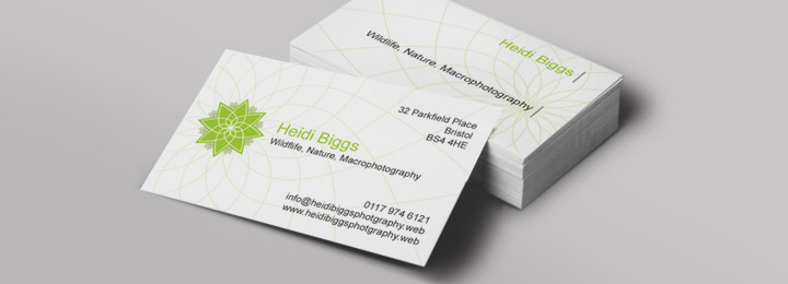 Networking cards: your business cards from Vistaprint